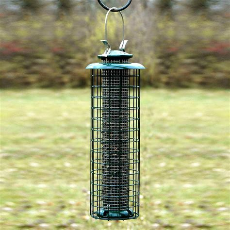 shop woodlink metal squirrel resistant tube bird feeder at