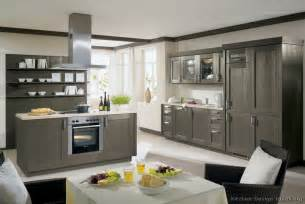Gray Cabinets Kitchen by Pictures Of Kitchens Modern Gray Kitchen Cabinets