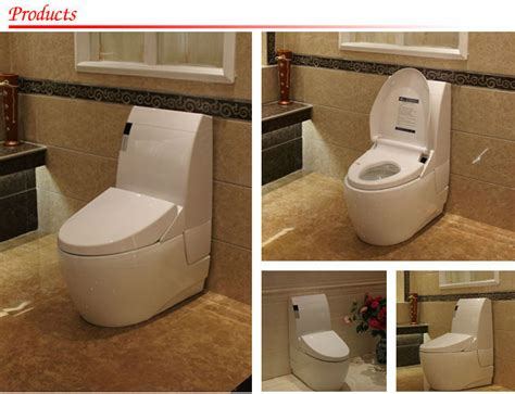 Bidet Washer Automatic Toilet Seat Intelligent Toilet Seat With Smart