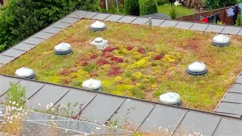 living roof resturant roof matting xero flor green roof system utilizes