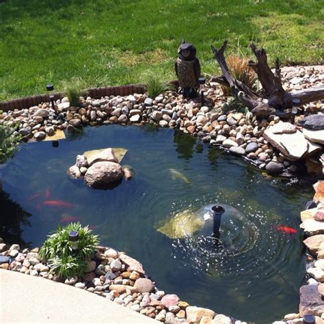 triyae backyard ponds for dummies various design