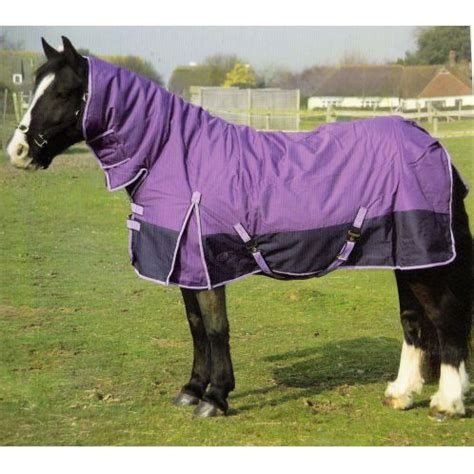 cheap rugs for horses rug sales rugs sale