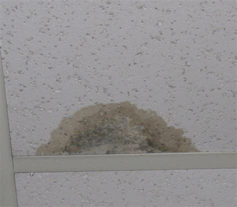how to cover a water stain on the ceiling talkbacktorick