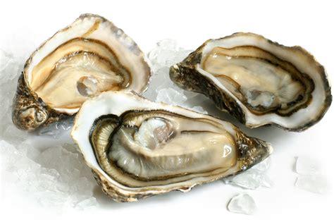 Kerang Oyster Ricerca Ricette Con Salsa Di Ostriche Giallozafferano It