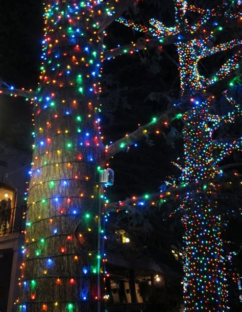 christmas lights around windows 227 best downtown design images on pinterest christmas
