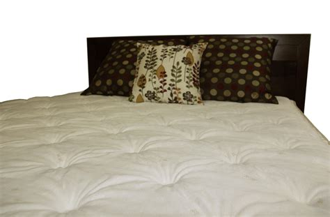 Hamilton Pillow Top Mattress by Deluxe Foam Encased Mattress On Sale With Free Extended