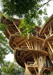 bamboo house design joy studio design gallery best design