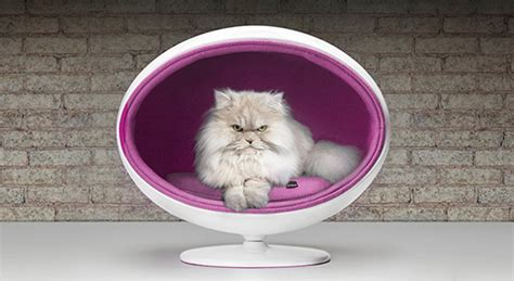 luxury cat beds padpod luxury cat bed from bark miao hauspanther