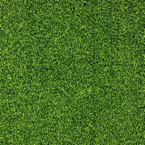Welcher Rasensamen Ist Der Beste 2244 by Rasensamen Grassamen Sportrasen Spielrasen