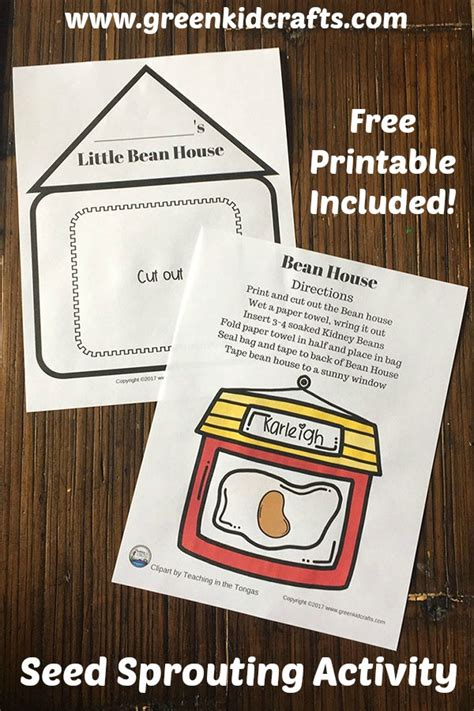 bean house printable bean house seed sprouting activity green kid crafts