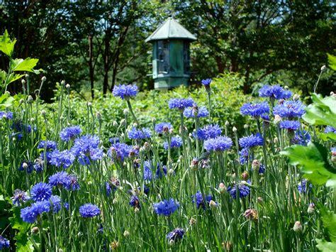 daniel stowe botanical garden coupon botanical gardens