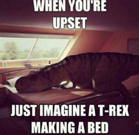 Funny Feel Better Memes - best 25 get well soon funny ideas on pinterest get well
