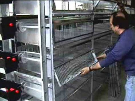 gabbie per quaglie usate gabbia voliera fai da te quaglie doovi