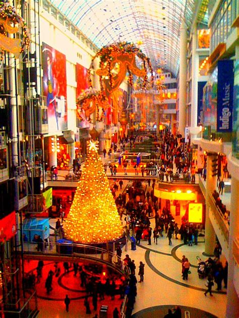 god and gum nuts evacuate christmas decorated shopping