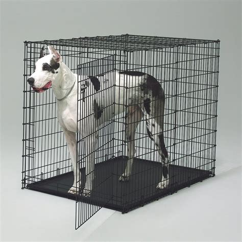 crates for large dogs crate divider panel for midwest 1154u large crates cross peak products