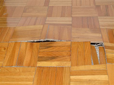 Hardwood Floor Repair by Sandless Refinishing Repairs Quality Hardwood Floors