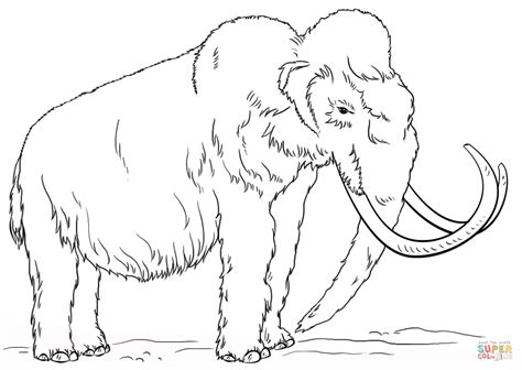 woolly mammoth coloring page free printable coloring pages