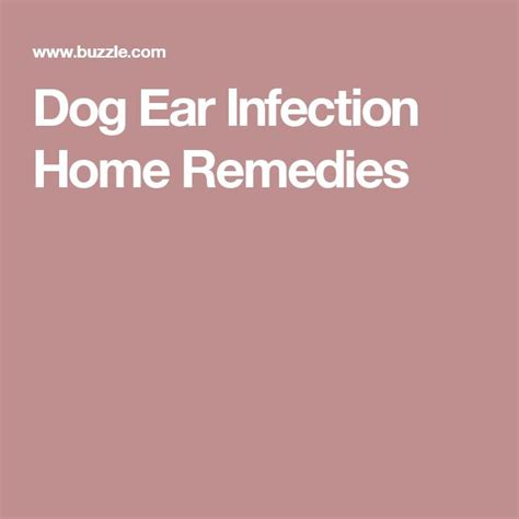 ear infection home treatment m 225 s de 1000 ideas sobre ear infection remedy en dolores de o 237 do