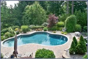 landscaping around a pool swimming pool rehab remodeling renovation ideas