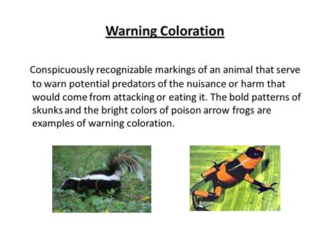 warning coloration homeostasis and the adaptations that allow it ppt