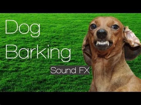 barking sound effects barking free sound effect šuns lojimas nemokamas