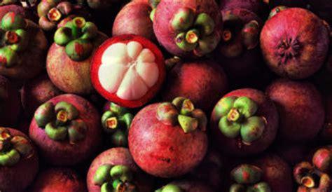fruit x asia asian fruit mango fruit