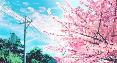 cherry tree anime anime cherry blossom