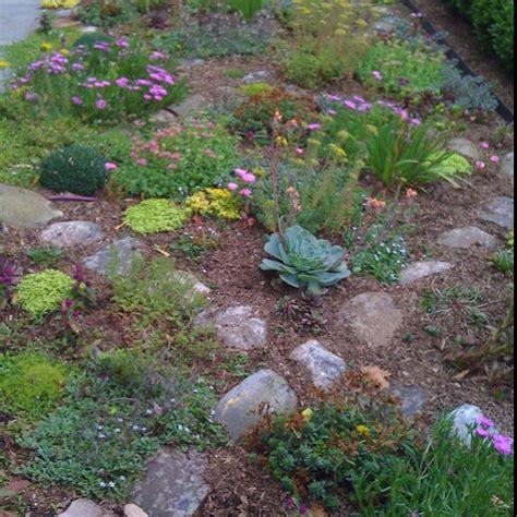 Alpine Garden Alpine Gardens Pinterest Alpine Rock Garden