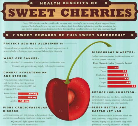 All About Cherries by The Earth Of India All About Cherries In India