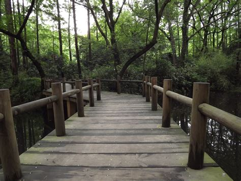 small wooden bridge the small wooden bridge by tudybeck on deviantart