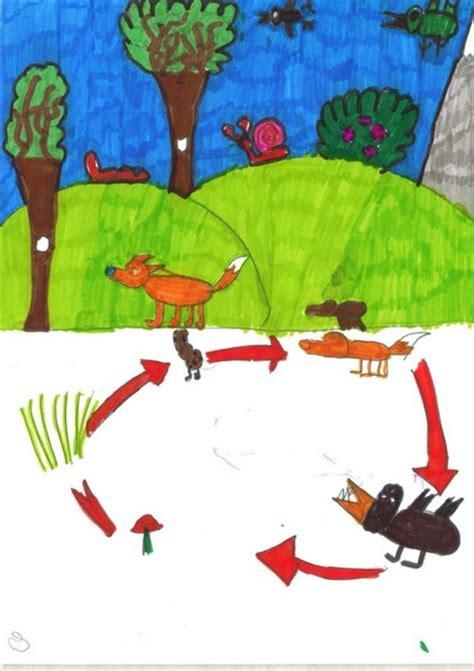 catena alimentare bosco parchi veneto elaborati delle scuole