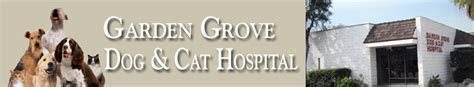 garden grove and cat hospital garden grove california veterinarian and pet hotel brookhaven pet hospital prices
