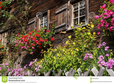 garden with flowers in front of a wooden house stock photo image 49048644