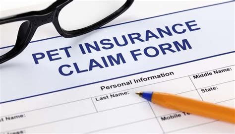 best puppy insurance pet insurance comparison what is the best pet insurance for dogs top tips