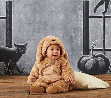 pottery barn puppy costume baby costume pottery barn
