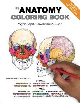 kaplan anatomy coloring book third edition the anatomy coloring book 9780321832016 medicine