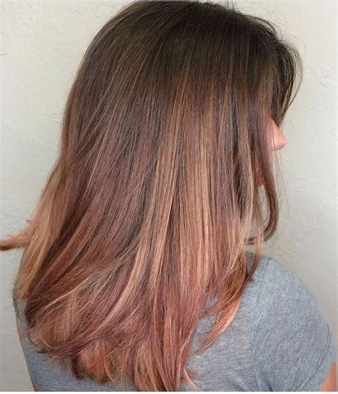 rose gold hair dye dark hair best 20 rose gold highlights ideas on pinterest rose