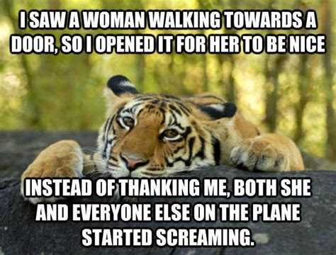 Tiger Meme - tiger meme funny pictures quotes memes jokes