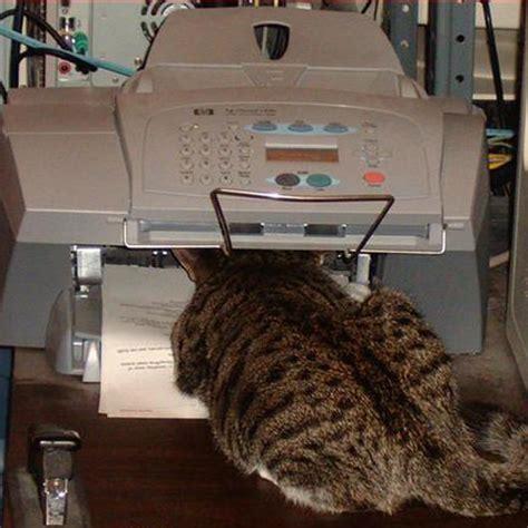 Fax Machine Meme - 10 best online electronic fax service ringcentralfax vs