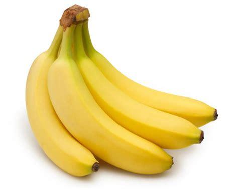 quali alimenti contengono aminoacidi quali alimenti contengono triptofano metionina tirosina
