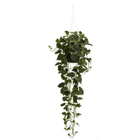 hanging plant 44 inch philodendron hanging basket silk plants hanging