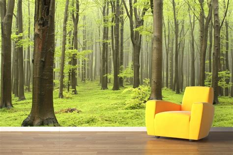 wall mural paper wallpaper decals and wall murals trees edition