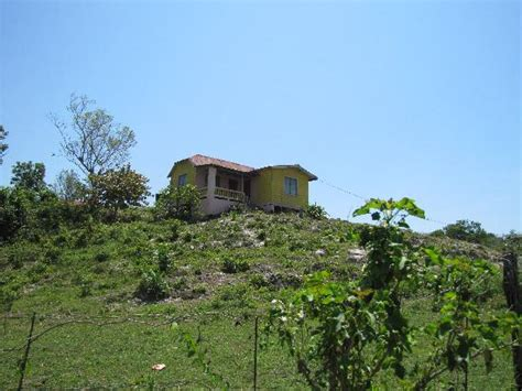 house on the hill house on the hill picture of negril westmoreland parish tripadvisor