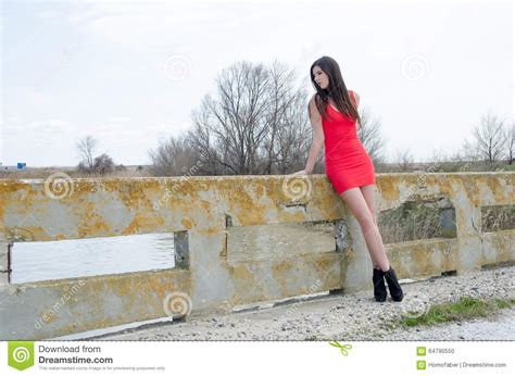 Would You Wear Careys High Heels by Slim Wear Dress And High Heels Stock Photo