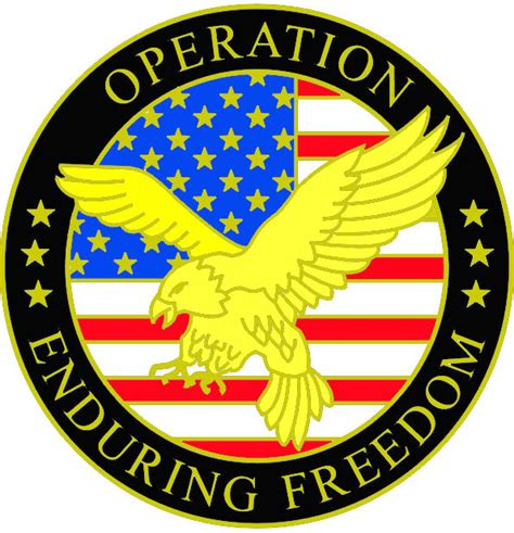 Operation Enduring Freedom Pin   Operation Iraqi and Enduring Freedom Pins   PriorService.com