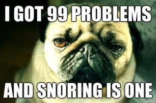 Pugs Meme - funny pug snoring meme funny pug pictures