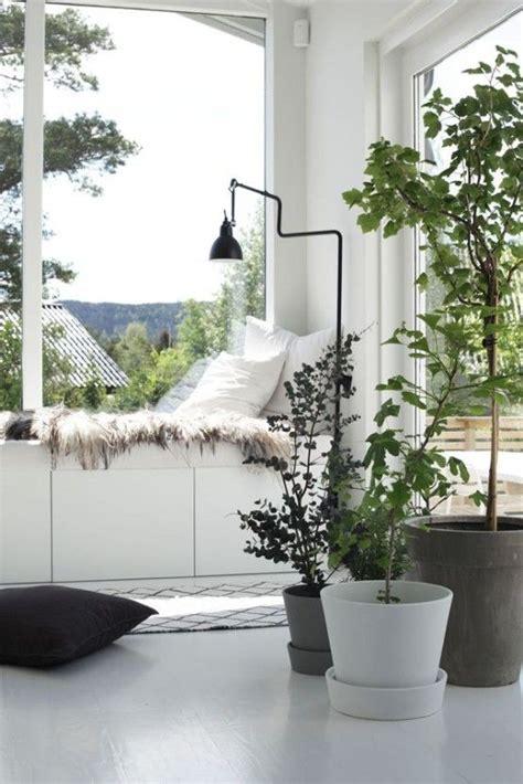 cool ways  effectively   windowsill digsdigs