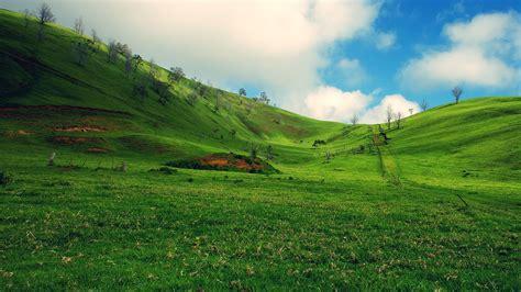 landscaping hills wallpaper grass green hill cloud landscape desktop