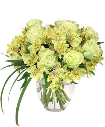 Belva Flower by Mount Pleasant Florist Mount Pleasant Sc Flower Shop