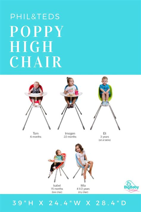 chicco swing chair chairs top chicco baby swing ideas stunning chicco polly